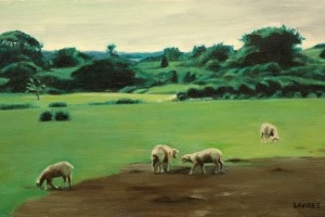 Grazing Sheep, Martha's Vineyard