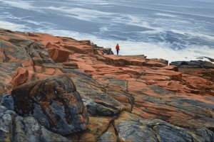 Maine Coast - On the Edge
