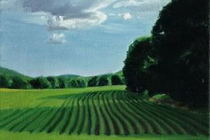 Soy Fields